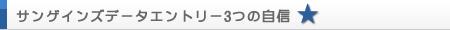 サンゲインズデータエントリー3つの自信